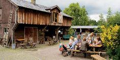 Zoeterwoude  Boerderij 't Geertje, - mooie plek, gratis entree, kinderen vinden het top om tegen een kleine betaling de geitjes en flesje te geven, of een pony ritje te maken, varen en boerderij winkel