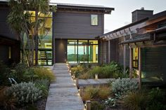 Entrance, Pathway, Lighting, Elegant Contemporary Home in Te Horo, New Zealand Entrance Design, House Entrance, Door Entry, Design Entrée, House Design, Design Model, Design Ideas, Contemporary Landscape, Landscape Design