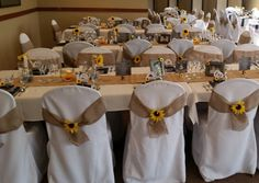 Chair Bows & some table decorations