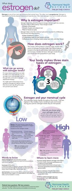 what does estrogen do?