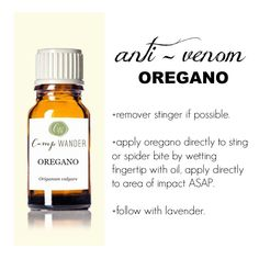 Oregano has anti-venom properties, if applied soon after a bee sting or spider bite, symptoms will be alleviated greatly, no kidding!  Last weekend I was on an ATV with our 4 yr old grandson who was stung by a wasp that came out of nowhere. We dashed back to the cabin for the Oregano and Lavender and just by dabbing the area with my wet fingertip (not even a whole drop) within minutes the pain was gone with no swelling and off we went to play. Remember this protocol, it's simple and works…