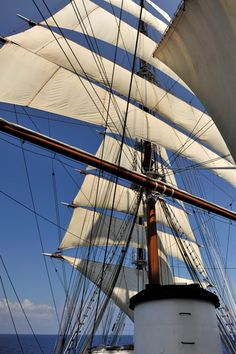 Sea Cloud under full sail by Lindblad Expeditions-National Geographic Sailboat Interior, Classic Sailing, Full Sail, Out To Sea, Sand And Water, Sail Away, Motor Yacht, Tall Ships, Sailing Ships