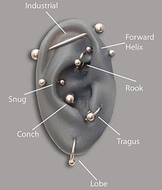 Ear Piercing Locations snug, conch, or rook?