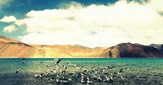 The Pangong Lake, Ladakh