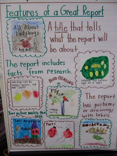 Anchor Chart for writing a report (primary) from joyfullearninginKC.blogspot. Informational Writing