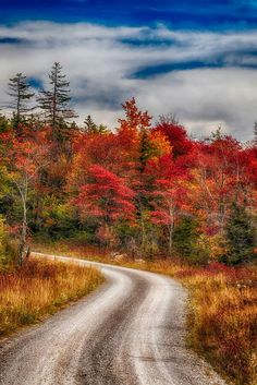 Tucker County, West Virginia by Ernie Page