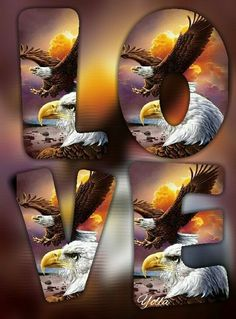 Love Images, Love Pictures, Love Wallpaper, Iphone Wallpaper, Cellphone Wallpaper, Beautiful Love, Cute Love, Verona, Eagle Art
