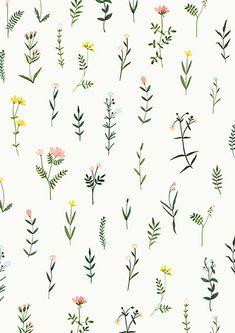 821 best vector flowers