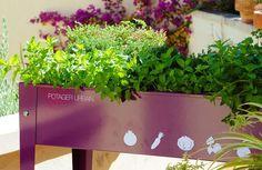 Herstera Urban Gardening Hochbeet