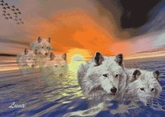 white wolf art like the art work her would like the 3 wolves on a tattoo for each of my kiddos