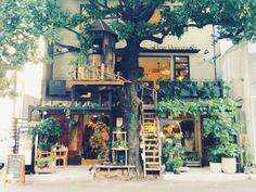 広尾にあるボタニカルカフェ【レ・グラン・ザルブル】。お店の名前にもなっている「レ・グラン・ザルブル」とはフランス語で「大きな木」を意味します。その名の通り、大きなシンボルツリーがお店に寄り添うように立っているんです。 レ・グラン・ザルブルにはカフェだけではなく花屋さんも併設されていて、店内はナチュラル素材や自然に囲まれた癒し空間が広がっています。 大きな木に包み込まれているような気分を味わいながら、癒しのひと時を過ごしてみませんか?