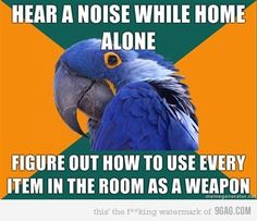 paranoid parrot.