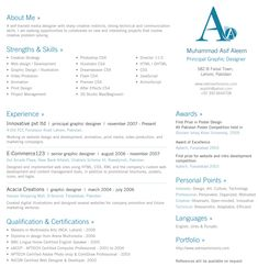 Professional Resume Design  Rex  Resume Ideas Resume Examples