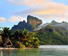 Places to see: Save The Marine Life Bora Bora, French Polynesia