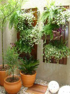 Pergola With Glass Roof Product Little Gardens, Small Gardens, Diy Pergola, Pergola Ideas, Wisteria Pergola, Inside Garden, Grow Tent, Paludarium, Plant Decor