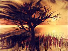 der alte Baum I Bilder: Poster von Dagmar Marina bei Posterlounge.de