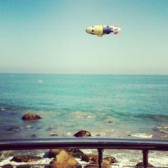 Just another day at the beach... #MalibuBeachInn #Malibulife #Malibu #CarbonBeachClub #ocean #beach #blimp