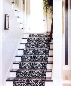 Zebra Runner... when I get a house this will be the first thing to go in it!