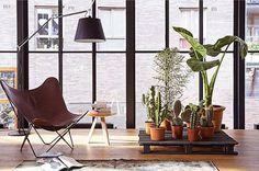 Decoracion con un icono del diseño: la silla BKF o Butterfly http://bit.ly/1pO88g7