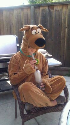 scooby knowss bong weed