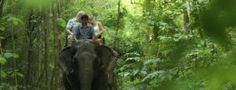 Elephant Ride near the River Kwai in Thailand.