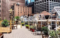 Rooftop eatery features private greenhouses for socially distanced dining City Restaurants, Greenhouse Ideas, Rooftop Terrace, Greenhouses, Square Feet, Indoor, Dining, World, Plants