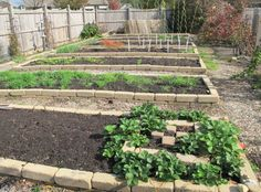 Vegetable Garden Designs For Small Yards