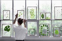 Un intérieur vert sans aucune plante ! / Green Interior without any plant ! / By Hëllø Blogzine.