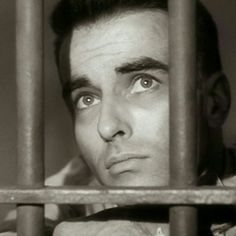 The gifted and tormented screen legend was born on October Clift died from a heart attack on July He was . Hollywood Actor, Old Hollywood, Classic Hollywood, Tab Hunter, Mary Martin, From Here To Eternity, Montgomery Clift, Anthology Series, Katharine Hepburn