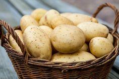 Суперэлита картофеля – что это такое? Potatoes, Vegetables, Eat, Food, Garden Ideas, Gardening, Design, Garten, Vegetable Recipes