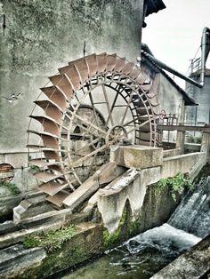 Il mulino dell'azienda agricola Camisani in funzione per pulire il riso appena raccolto