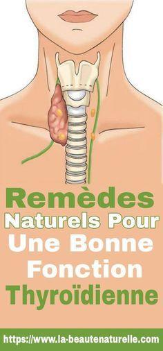 Remèdes naturels pour une bonne fonction thyroïdienne #fonction #thyroïdienne