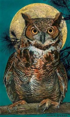 The owl is a symbol of the feminine, the moon, and the night. One who works with owl medicine will be able to see and hear what is not being said, and you will see what is hidden in the shadows. Owl Bird, Bird Art, Pet Birds, Owl Photos, Owl Pictures, Graffiti Kunst, Great Horned Owl, Beautiful Owl, Wildlife Art