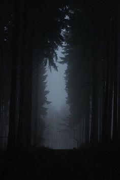 On A Dark Trail by bogenfreund, via Flickr
