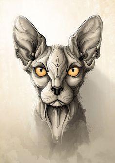 Rafapasta | Ilustrador: Wild animals