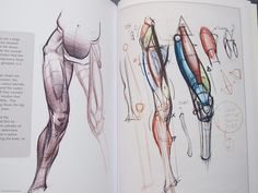 figure+drawing+design+and+invention+michael+hampton+life+drawing+anatomy+muscles+art+books.jpg (500×375)