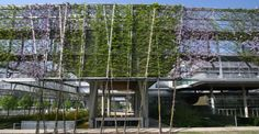 :: Immobilienreport - München :: BRT-Architekten.php Scaffolding, Countryside, Greenery, House Styles, Building, Nature, Image, Architecture, Vertical Gardens