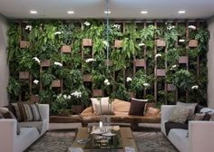 ✶ green living room, because of the PLANTS! ✶