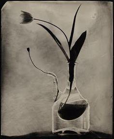 The Ansel Adams Gallery Blog: October 2008