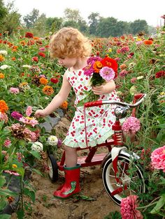 A little girl in a flower dress and red galoshes picks spring flowers while testing her new trycicle. Photo by mollypop on Flickr
