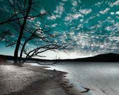 Teal Sky Clouds Tree Lake Wall Art Home Decor Matted Picture on Etsy, $17.99