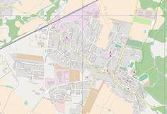 Glob z kapustą: Szybka mapa na niedzielną wyprawę