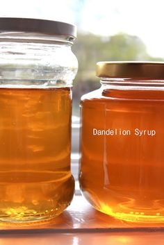 Dandelion Syrup:::Never thought I'd be waiting for dandelion season..!!!