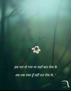 1359 Best Shayari And Hindi Quotes And More Images Hindi Quotes