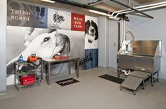 59 best dog wash pet spa images on pinterest dog spa pet store third north apartments in minneapolis mn dog wash 6 solutioingenieria Image collections