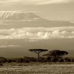 *Kilimanjaro, Tanzania