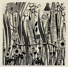 Helen Roddie - North Yorkshire Open Studios - Helen's studio practice combines a passion for plants, drawing and print. Hedgerows are an ever-changing and favourite source of inspiration