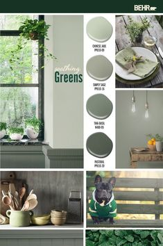 Bring the beauty of nature into your home with these nature-inspired green colors. BEHR Paint in Chinese jade, Simply Sage, Thai Basil and Pastoral combine to Behr Paint Colors, Green Paint Colors, Green Colour Palette, Bedroom Paint Colors, Interior Paint Colors, Paint Colors For Living Room, Paint Colors For Home, House Colors, Soothing Paint Colors