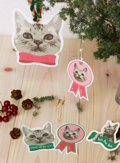 Meow. Meow. Meow. | 24 Adorable Free Gift Tags You Can Print Right Now