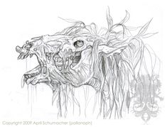 Kelpie head study by pallanoph.deviantart.com on @deviantART